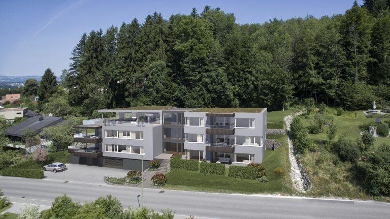 Anjana Perera Visualisierung - Ringwilstrasse 25, Hinwil - Sommerhaus AG, Steinhausen